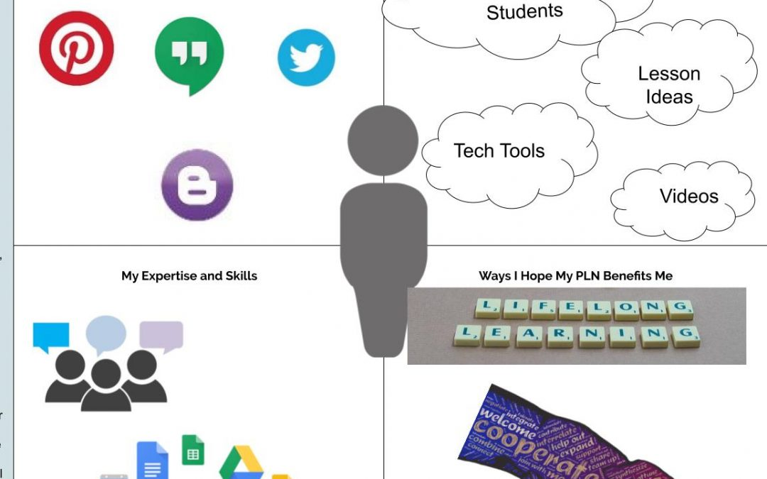 Using Social Media in Education for Professional Development